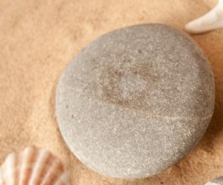pebble sand shell