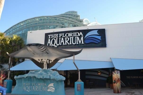 The Travel Book The Florida Aquarium Tampa United