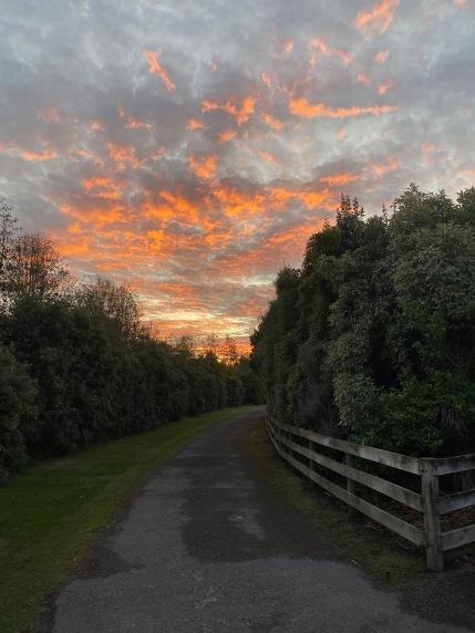 11 Amazing Clouds in Christchurch