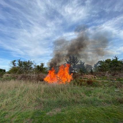 3 Giant bonfire